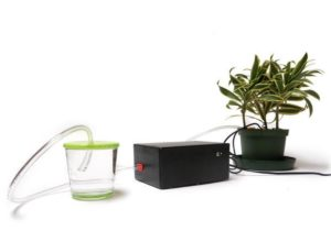 DIY Plant Waterer