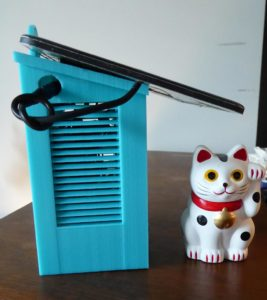 Weather Station & Cat-Side View
